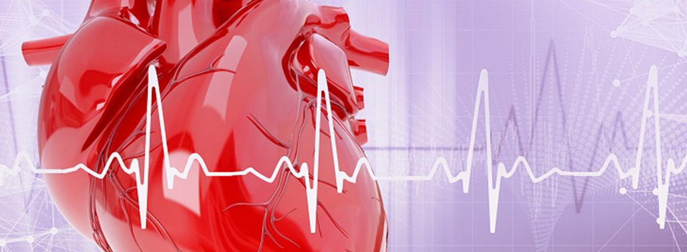 Cardiologia Tortona   Visita Cardiologica